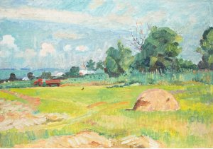 """""""The field in the village"""""""